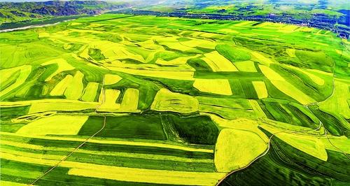 【地州亮点连连看】 伊犁:生态立州绿色发展